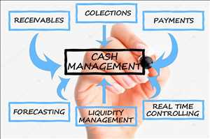 현금 관리 시스템 시장