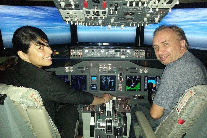글로벌 비행 시뮬레이터 시장