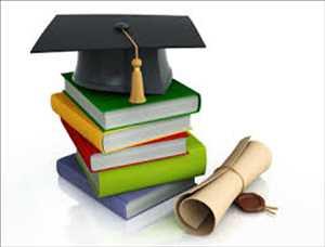 고등 교육 시장